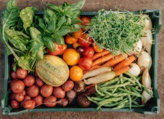 ωμοφαγία & ωμοφαγική διατροφή